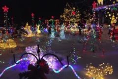 Christmas-House-Edmonton-Maisies-Magical