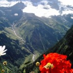 backpacking-switzerland-most-expensive-country-original
